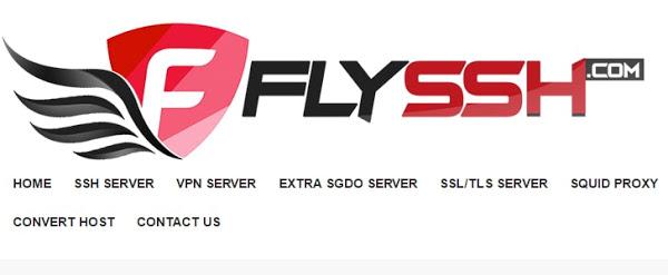 flyssh